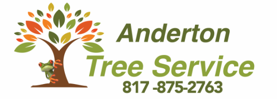 Tree Service Fort Worth | Tree Removal | Tree Trimming| Arborist | Tree Preservation